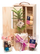 Picture of Take A Moment Living Tree Gift