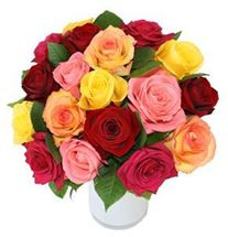 Picture of A Dozen Mixed Roses