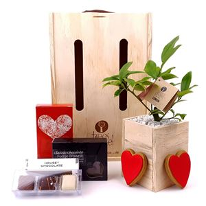 Picture of All My Heart Tree Gift