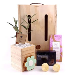 Picture of Coffee & Cakes Living Tree Gift
