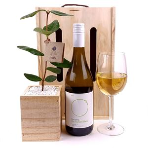 Picture of Living Tree & Wine Gift