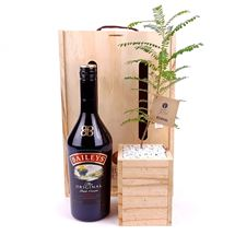 Picture of Living Tree with Baileys Irish Cream Gift