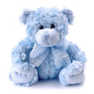 Picture of Blue Teddy Bear