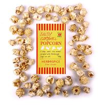 Picture of Salty Caramel Popcorn Bag 50g (GF)