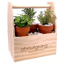 Picture of The Herb Garden