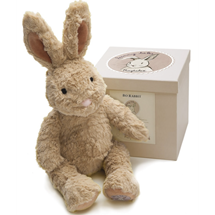 Picture of Bo Rabbit in a Box