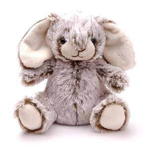 Picture of Eamon Bunny