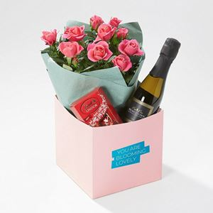 Picture of Rose Plant Gift Box