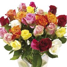 Picture of Twelve Mixed Roses